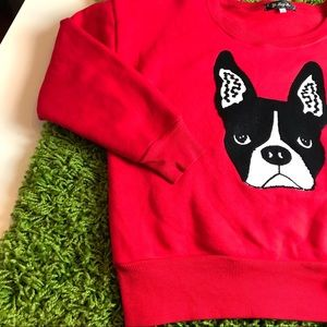 Sweaters - Bulldog Embroidered Pullover Sweatshirt Red Small